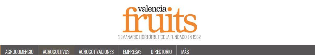 Marketing para cooperativas agroalimentarias (SEO)-Valencia Fruits